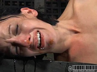Cage, Bdsm, Sucking, Bound, Clothes ripped, Pussy, Orgasm